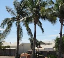 The Saturday City: Broome
