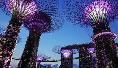 The Saturday City: Singapore