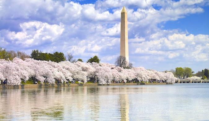 The Saturday City: Washington D.C.