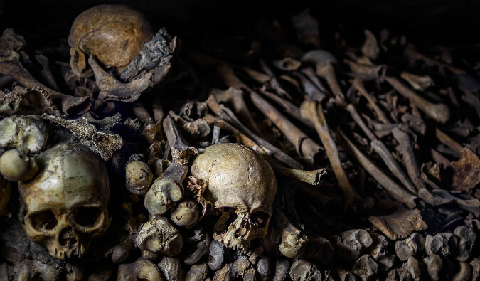 Human Skulls and bones in Catacombs Paris