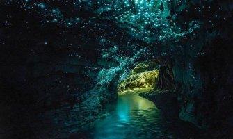 Waitomo's Glow Worm Caves