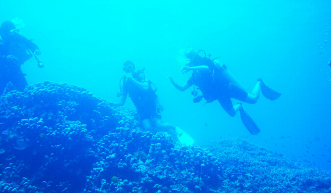 three people under water scuba diving