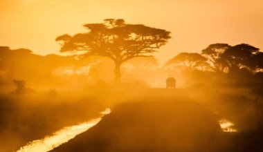 A safari jeep driving into the sunset on a dirt road in Africa