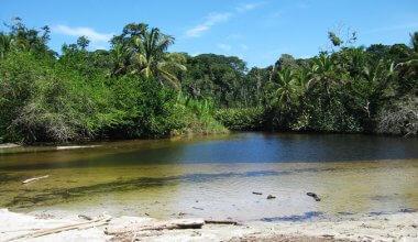 lake in Cahuita National park