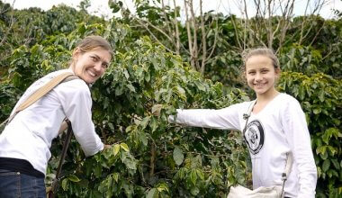 a woman and a girl smiling and picking fruit volunteering abroad
