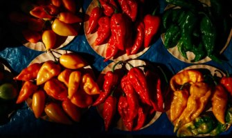 Colorful hot peppers together on a table