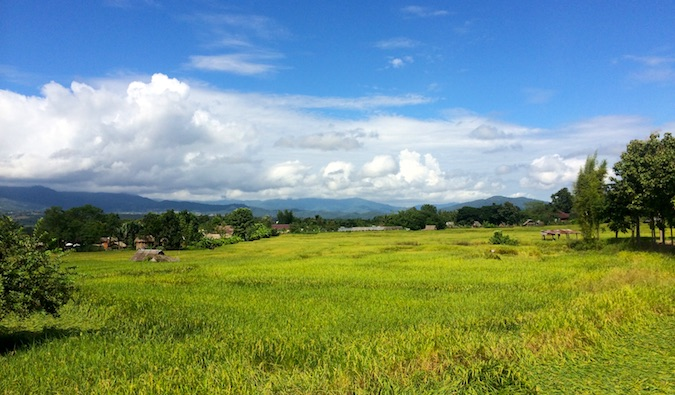 A picture of a field in Isaan in Thailand