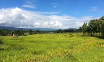 Pai: Thailand's Mountain Backpacker Paradise (or Hell?)