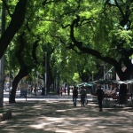 10 Ways to Save Money in Argentina