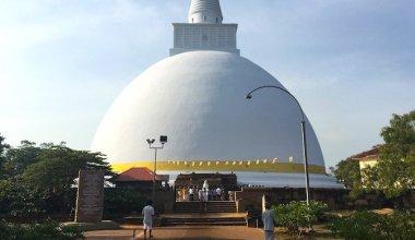 http://www.nomadicmatt.com/wp-content/uploads/2016/10/srilankathoughts1-2-380x220.jpg