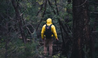 A man hiking in a dense forest