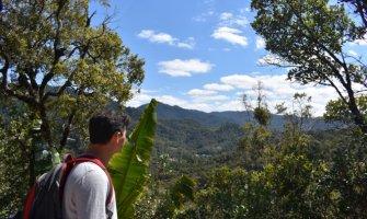 Nomadic Matt looking at the jungle in Madagascar
