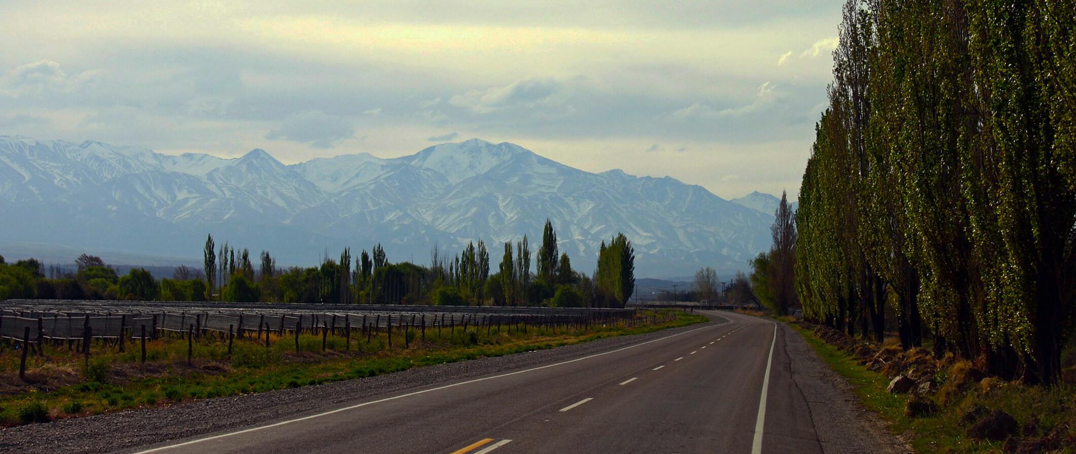 Mendoza Argentina Travel Guide