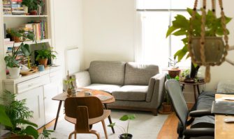 A sunny apartment with a cozy couch and green plants