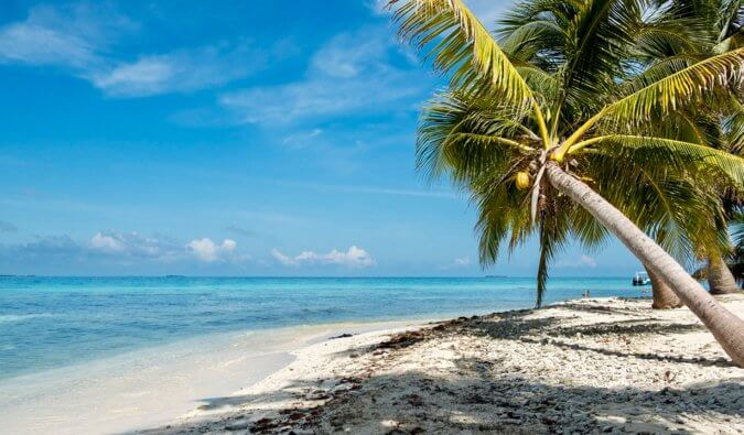 Is Belize Safe To Visit Here S What