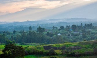 The view overlooking the lush forests and jungles of Uganda