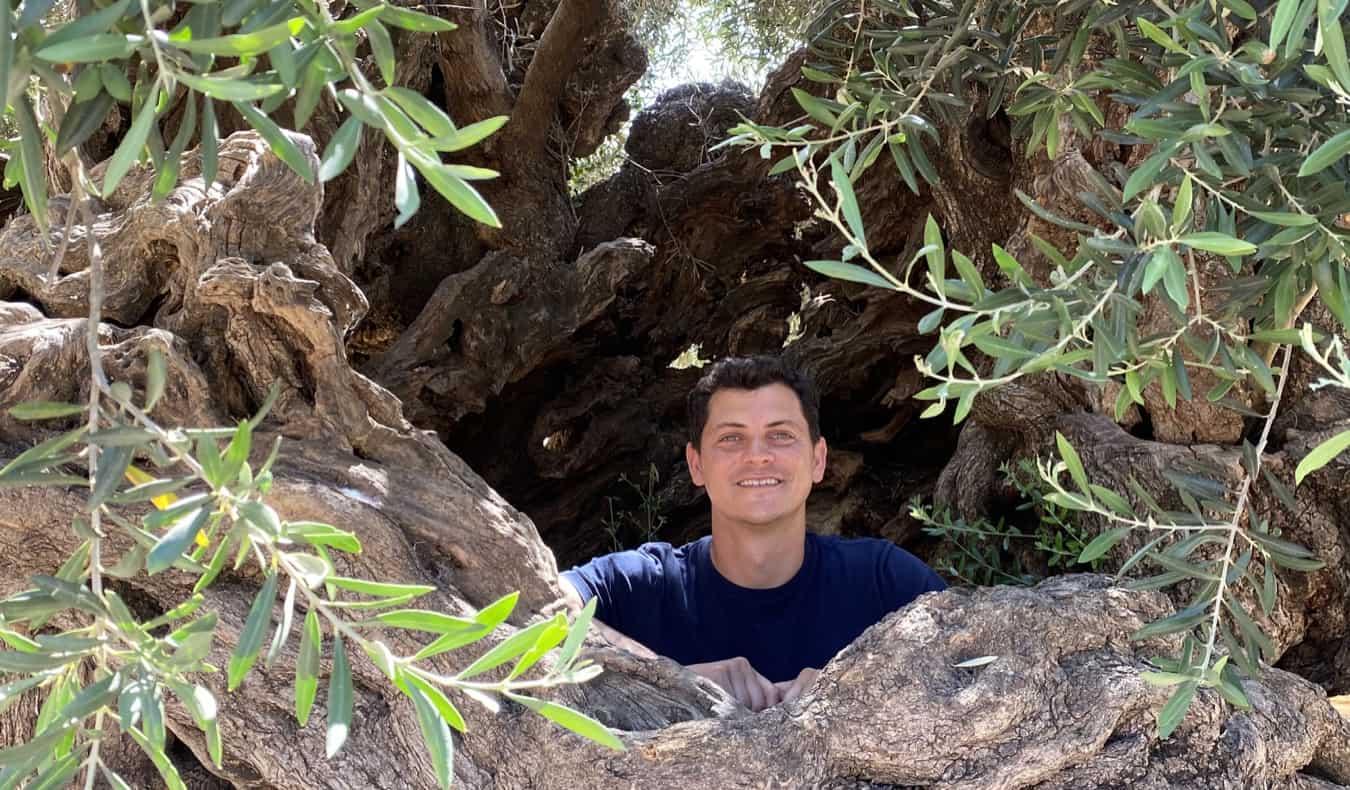 Nomadic Matt in an olive tree in Crete, Greece